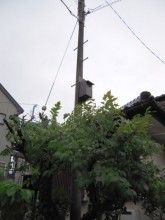 20081019_02